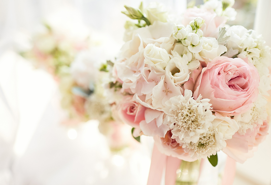 White roses Frisco